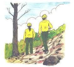 forestaltrabajadores